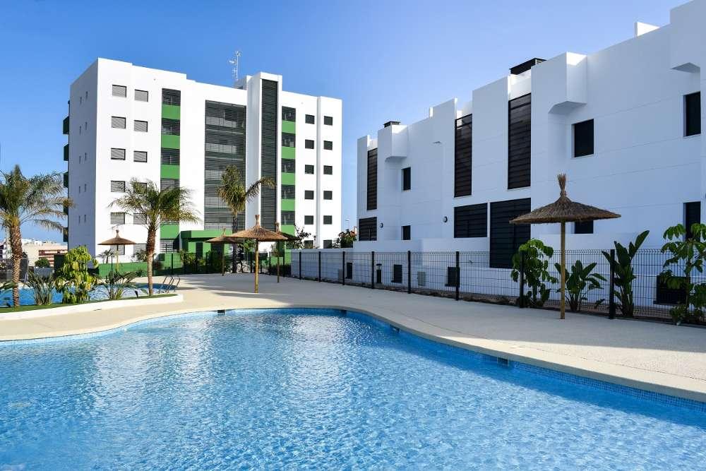 mil palmeras alicante appartement foto 3871401