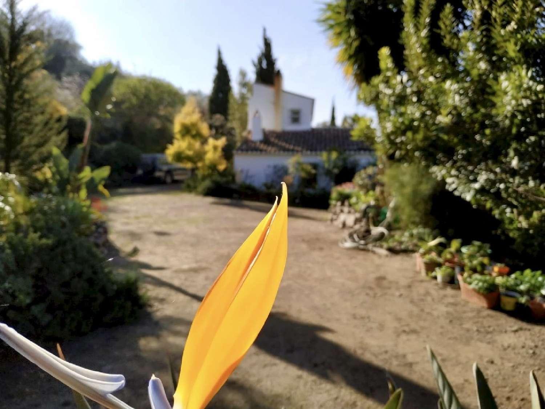 cómpeta málaga hus på landet foto 3877365