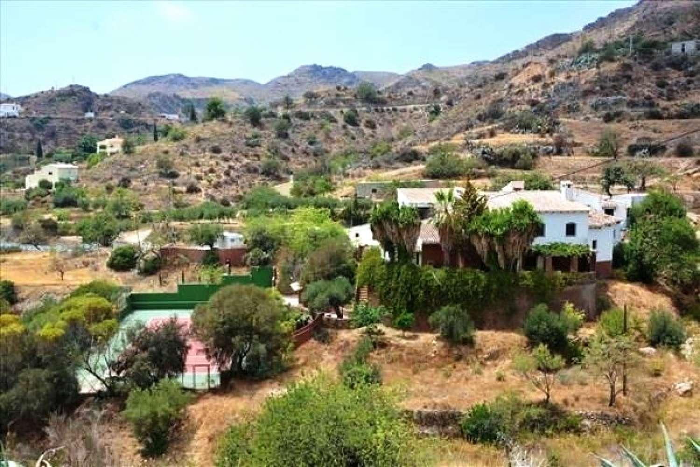 bedar almería villa foto 3884373