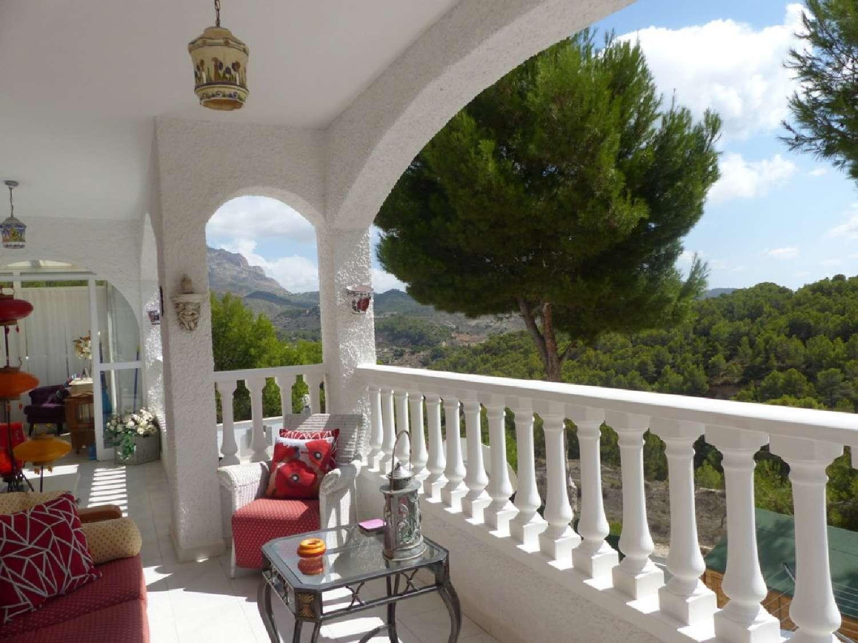 tibi alicante villa foto 4006865