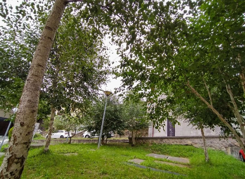 loiola-zorroaga-landabaso guipúzcoa planta baja foto 4076851