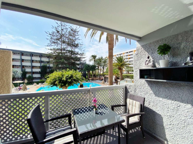 playa del inglés gran canaria appartement foto 4659986