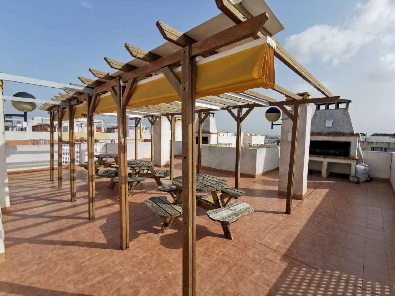 almoradí alicante penthouse foto 4658940