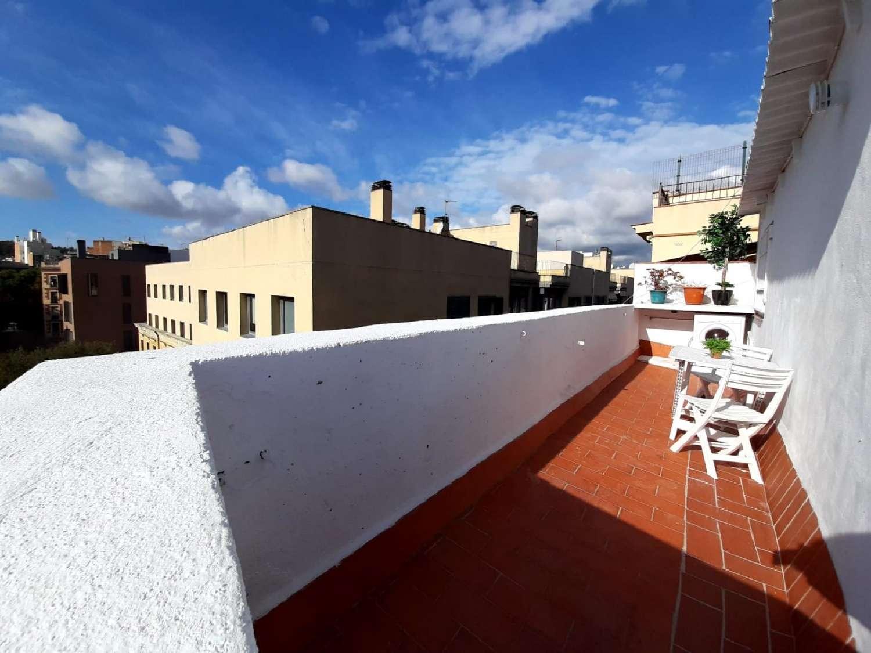 ciutat vella-raval barcelona ático foto 4385975