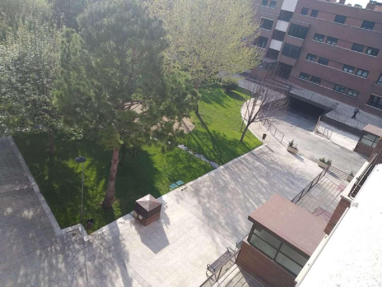 hortaleza-palomas madrid ático foto 4579746