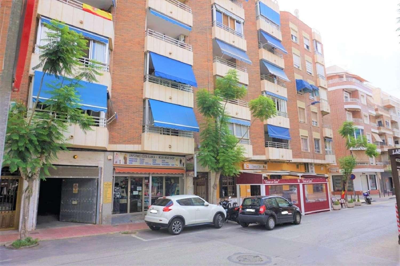 torrevieja alicante lägenhet foto 4584992