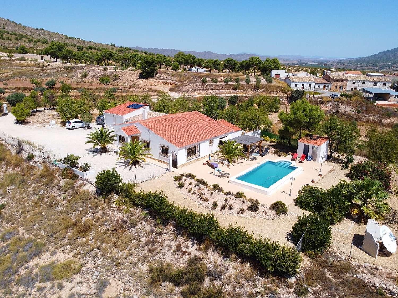 raspay murcia villa foto 4612778