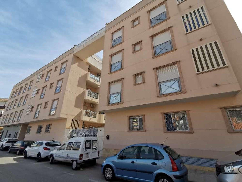 almoradí alicante appartement foto 4635273