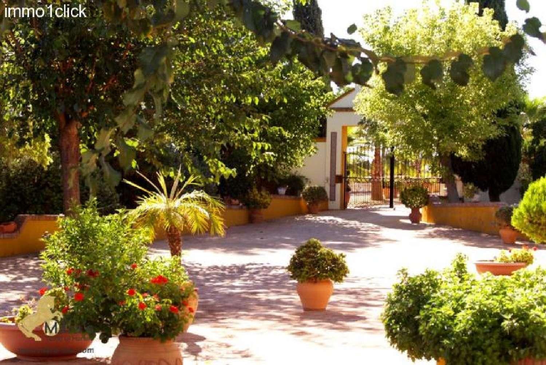 carmona sevilla hus på landet foto 4615341
