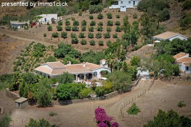 cómpeta málaga boerderij foto 4615360