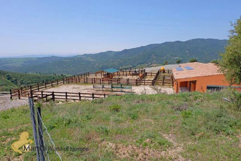 casares málaga boerderij foto 4615354
