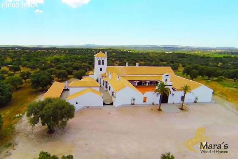 castilblanco de los arroyos sevilla hus på landet foto 4615343