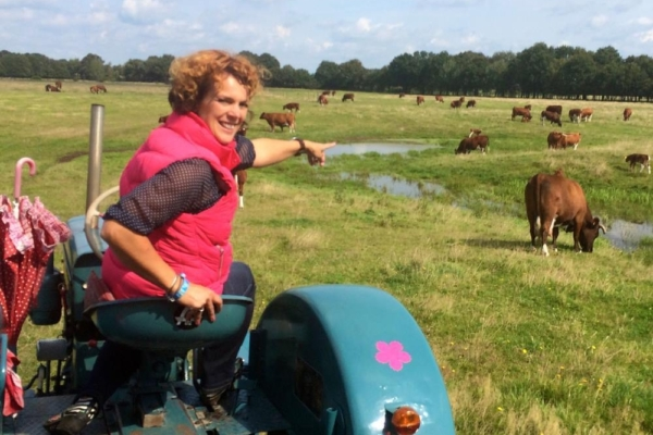 Salland Koe Safri Simone met de koeien