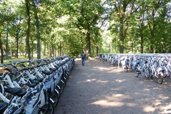 Veluwe witte fietsen1