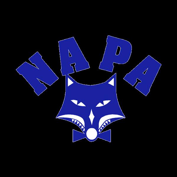 Napapiirin Palloketut Ry urheiluseuran logo