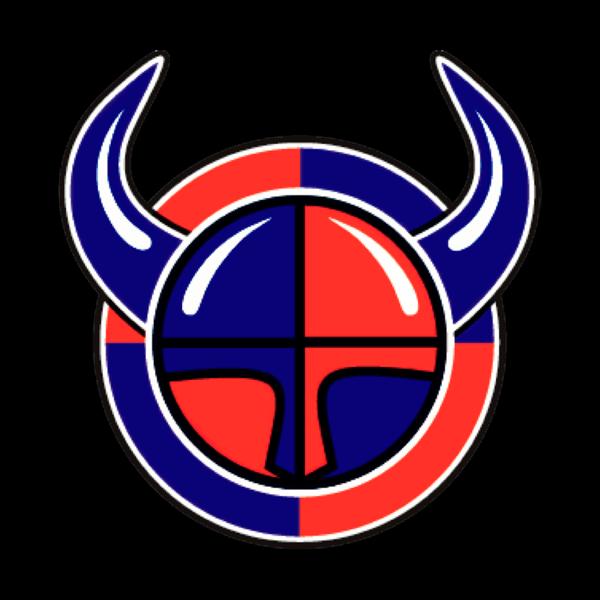 Viikingit jääkiekko Ry logo