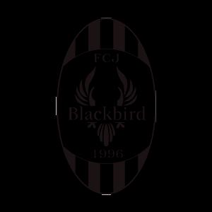 FC Blackbird Ry logo