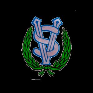 Salon Viesti Ry urheiluseuran logo