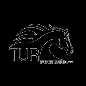 Turun Urheiluratsastajat Ry urheiluseuran logo