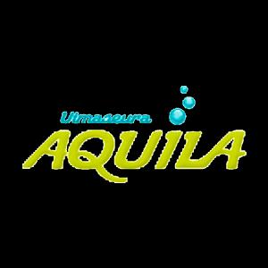 Uimaseura Aquila Ry urheiluseuran logo