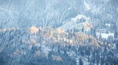 img-20131201-082212-ballonfahrt-alpen-slow-fly-00025