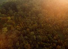 """Vorschaubild für Stock Bild """"img-20151016-180732-aerialstock-katzensee-00022"""""""