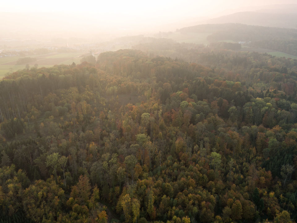 img-20151016-180426-aerialstock-katzensee-00013