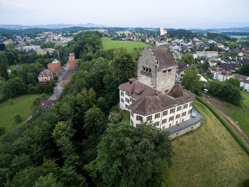 img-20150606-181103-dji-phantom-3-professional-airview-stock-schloss-uster-00118