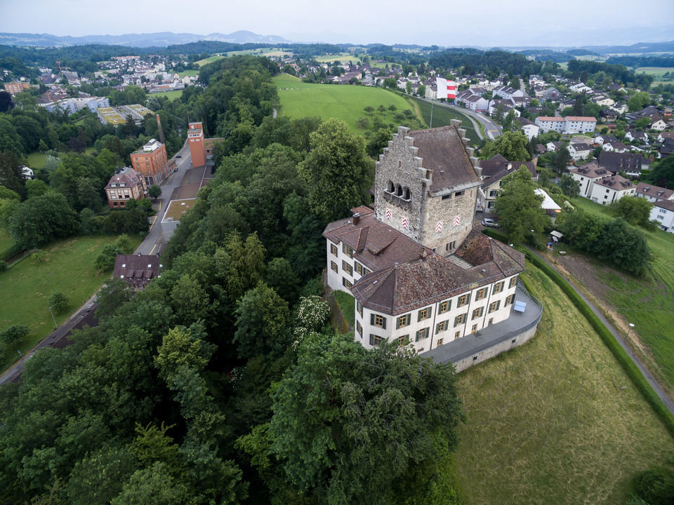 img-20150606-181109-dji-phantom-3-professional-airview-stock-schloss-uster-00119