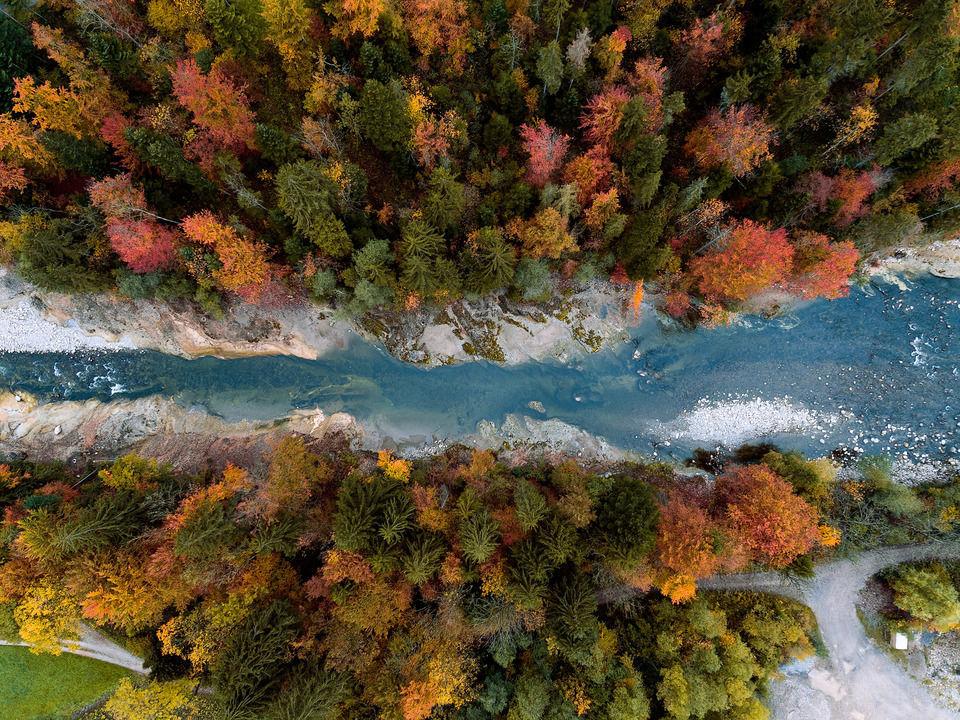 Luzerner Herbstwälder