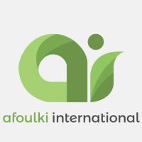 Afoulki International