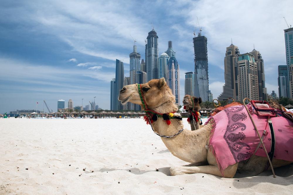 Dubai :$539(923.99BGN) Return Flights  From New York  and San Francisco