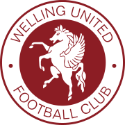 Logo for Welling