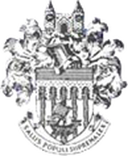 Logo for Tonbridge Angels