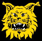 Logo for Ilves