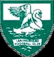 Logo for Leatherhead