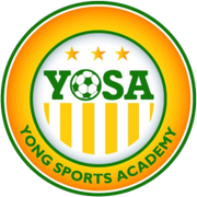Logo for Young Sports Academy