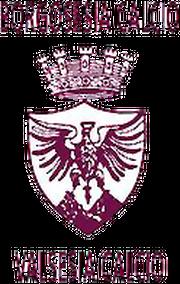 Logo for Borgosesia