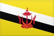 Logo for Brunei