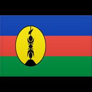 Ny Kaledonien logo