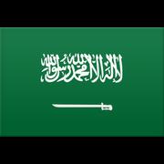 Saudi-Arabien logo