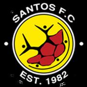 Engen Santos FC logo