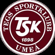 Team TG FF logo