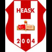 Halide Edip Adivar Spor logo
