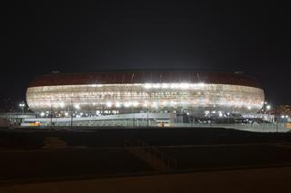 Mordovija Arena