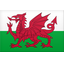Klublogo for Wales