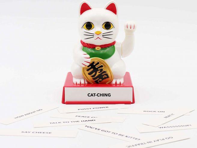 Chinese Gelukskat Cattitude
