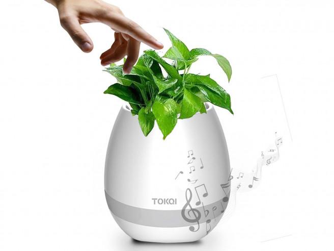 Pot De Fleurs Musical Magique
