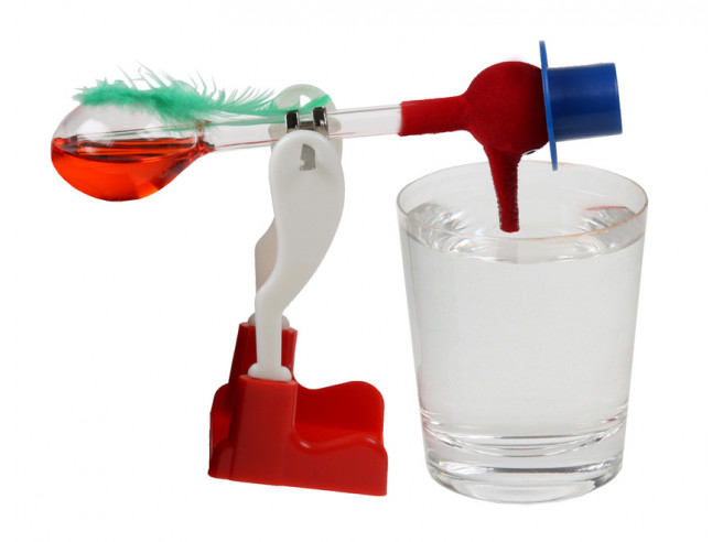 The Infamous Drinking Bird