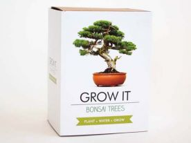 Bonsai Boompje Kit